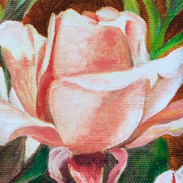 3-mas-rosa-rosae2
