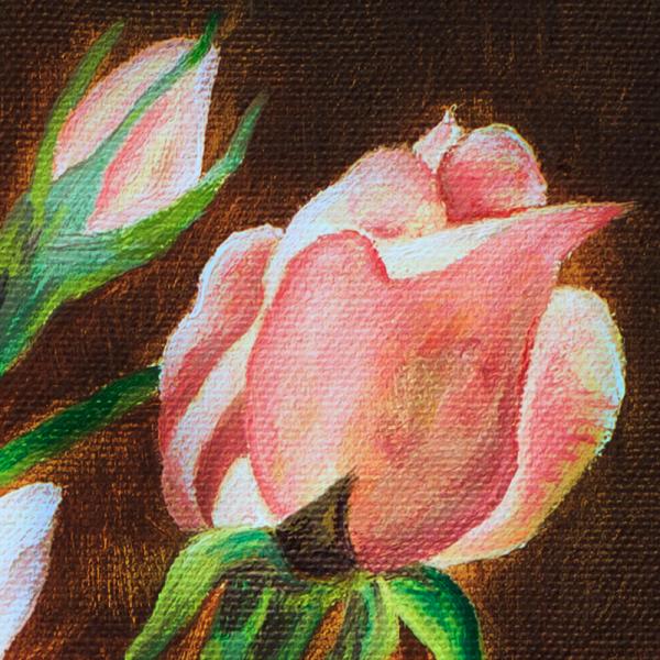 3-mas-rosa-rosae3